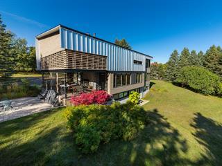 House for sale in Baie-Saint-Paul, Capitale-Nationale, 121, Côte de Pérou, 10951117 - Centris.ca