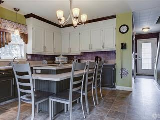 House for sale in Thetford Mines, Chaudière-Appalaches, 128, Rue  Saint-Antoine, 27810950 - Centris.ca