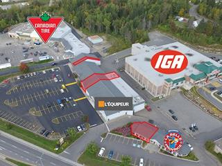 Commercial unit for rent in Sainte-Agathe-des-Monts, Laurentides, 40, boulevard  Norbert-Morin, 13893628 - Centris.ca