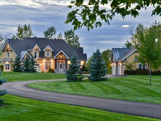 House for sale in Saint-Ours, Montérégie, 2170, Chemin des Patriotes, 18142286 - Centris.ca