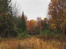 Terrain à vendre à Rivière-Rouge, Laurentides, Chemin du Lac-Jaune, 28023459 - Centris.ca