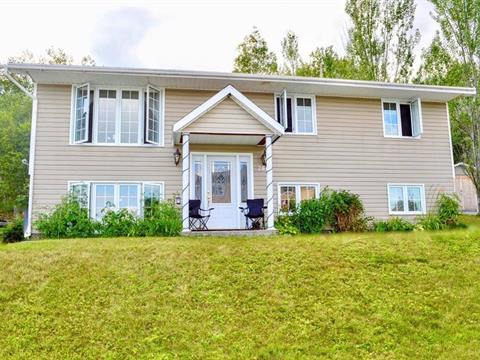 Maison à vendre à Témiscaming, Abitibi-Témiscamingue, 266, Rue  Boucher, 28699331 - Centris.ca