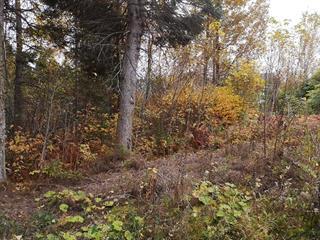 Terrain à vendre à Saguenay (La Baie), Saguenay/Lac-Saint-Jean, boulevard de la Grande-Baie Sud, 26763354 - Centris.ca