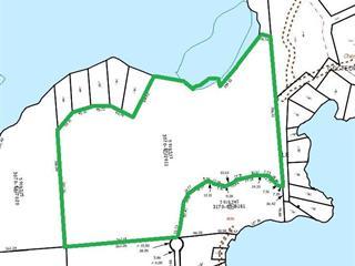 Terre à vendre à La Pêche, Outaouais, Chemin du Docteur, 11744145 - Centris.ca