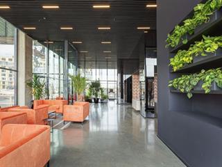 Condo / Apartment for rent in Brossard, Montérégie, 205, Avenue de l'Équinoxe, apt. 309, 28854226 - Centris.ca