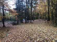 Lot for sale in Cantley, Outaouais, 32, Chemin  Goulet, 14679451 - Centris.ca