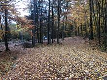 Terrain à vendre à Cantley, Outaouais, 32, Chemin  Goulet, 14679451 - Centris.ca