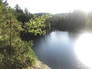 Land for sale in La Conception, Laurentides, Route des Ormes, 9914861 - Centris.ca