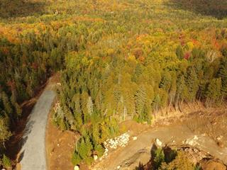 Lot for sale in Morin-Heights, Laurentides, Rue  Carver, 13245297 - Centris.ca