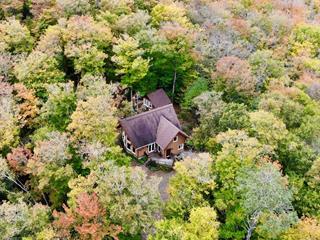 House for sale in La Minerve, Laurentides, 89, Chemin de La Minerve, 28486324 - Centris.ca