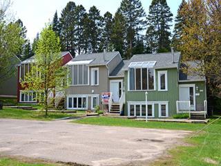 Condo à vendre à Sainte-Agathe-des-Monts, Laurentides, 173, Rue  Desjardins, 10607371 - Centris.ca