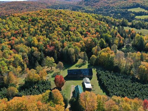 Farm for sale in Arundel, Laurentides, 30A, Chemin  Thomson Ouest, 17896060 - Centris.ca