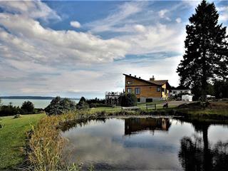 Maison à vendre à Baie-Saint-Paul, Capitale-Nationale, 140, Chemin de la Pointe, 26424613 - Centris.ca