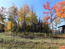 Terrain à vendre à Shannon, Capitale-Nationale, 244, Rue  Griffin, 26956211 - Centris.ca