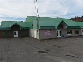Commercial building for sale in Adstock, Chaudière-Appalaches, 169, Rue  Notre-Dame Nord, 9314238 - Centris.ca