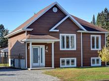 Maison à vendre à Sainte-Catherine-de-la-Jacques-Cartier, Capitale-Nationale, 49, Rue  Albert-Langlais, 19560389 - Centris.ca