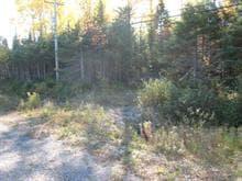 Terrain à vendre à Gaspé, Gaspésie/Îles-de-la-Madeleine, boulevard de York Sud, 28393314 - Centris.ca