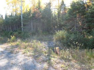Lot for sale in Gaspé, Gaspésie/Îles-de-la-Madeleine, boulevard de York Sud, 28393314 - Centris.ca