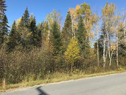Lot for sale in Rouyn-Noranda, Abitibi-Témiscamingue, Route des Pionniers, 15795107 - Centris.ca