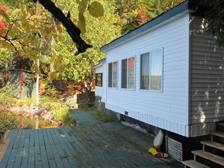 Chalet à vendre à Gracefield, Outaouais, 62, Chemin du Lac-Profond, 19139293 - Centris.ca