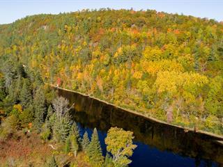 Lot for sale in Waltham, Outaouais, Chemin de la Rivière-Noire, 10656429 - Centris.ca