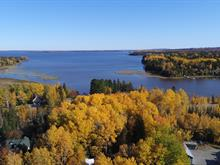 Cottage for sale in Preissac, Abitibi-Témiscamingue, 207, Avenue du Lac, 27953412 - Centris.ca