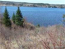 Lot for sale in Shipshaw (Saguenay), Saguenay/Lac-Saint-Jean, Chemin de la Baie-des-Castors, 13839541 - Centris.ca