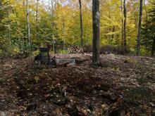 Terrain à vendre à Saint-Mathieu-du-Parc, Mauricie, Chemin du Lac-à-la-Pêche, 13439639 - Centris.ca