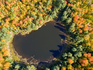 Terre à vendre à Waltham, Outaouais, Chemin de la Rivière-Noire, 22184784 - Centris.ca
