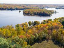 Land for sale in Waltham, Outaouais, Chemin  Chenal-de-la-Culbute, 26654942 - Centris.ca