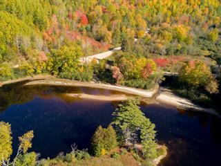 Lot for sale in Waltham, Outaouais, Chemin de la Rivière-Noire, 13954759 - Centris.ca
