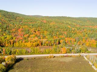 Land for sale in Waltham, Outaouais, Chemin de Chapeau-Waltham, 11730138 - Centris.ca