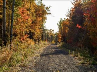 Terrain à vendre à Saint-Mathieu-de-Rioux, Bas-Saint-Laurent, Chemin du Lac Sud, 11668055 - Centris.ca