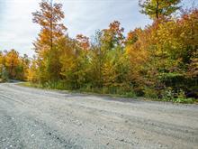 Terrain à vendre à Eastman, Estrie, Chemin du Mousqueton, 27759767 - Centris.ca