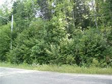 Lot for sale in Ferme-Neuve, Laurentides, Montée du Baskatong, 12980891 - Centris.ca