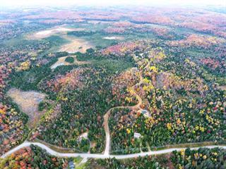 Land for sale in Sainte-Marguerite-du-Lac-Masson, Laurentides, Chemin de Chertsey, 9993818 - Centris.ca