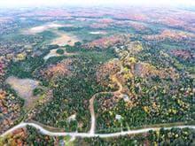 Terrain à vendre à Sainte-Marguerite-du-Lac-Masson, Laurentides, Chemin de Chertsey, 9099052 - Centris.ca