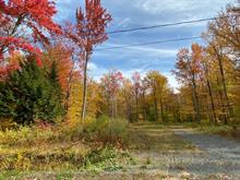 Terrain à vendre à Daveluyville, Centre-du-Québec, A, Chemin du Tour-de-l'Île, 23589007 - Centris.ca