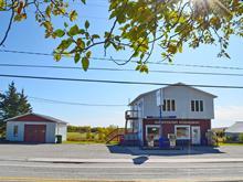 Bâtisse commerciale à vendre à Saint-Adalbert, Chaudière-Appalaches, 128, Rue  Principale, 9447297 - Centris.ca