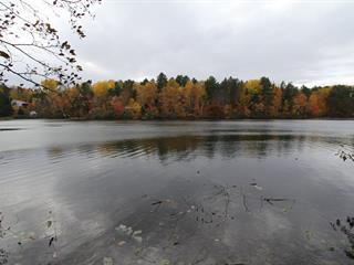 Terrain à vendre à Kazabazua, Outaouais, 104, Chemin du Lac-Shea A, 18319899 - Centris.ca