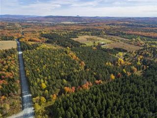 Land for sale in Saint-Jacques-le-Majeur-de-Wolfestown, Chaudière-Appalaches, 1553, Route  216, 20735586 - Centris.ca