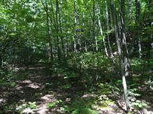 Lot for sale in Cantley, Outaouais, Chemin  Lamoureux, 24681387 - Centris.ca