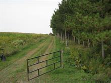Land for sale in Sainte-Christine, Montérégie, 8e Rang, 23014667 - Centris.ca