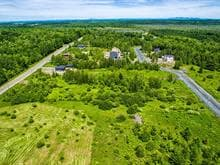 Lot for sale in Saint-Denis-de-Brompton, Estrie, Rue des Hérons, 25434807 - Centris.ca