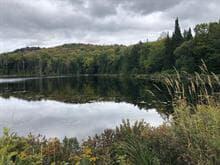 Land for sale in Saint-Faustin/Lac-Carré, Laurentides, Chemin du Lac-Mulet, 23789784 - Centris.ca