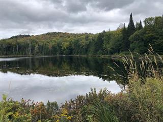 Terre à vendre à Saint-Faustin/Lac-Carré, Laurentides, Chemin du Lac-Mulet, 23789784 - Centris.ca