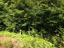 Lot for sale in Brownsburg-Chatham, Laurentides, Rue du Lac-Martinez, 17388326 - Centris.ca