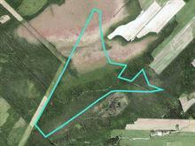 Terre à vendre à Saint-Patrice-de-Beaurivage, Chaudière-Appalaches, 1150, Rang du Petit-Lac, 18676108 - Centris.ca