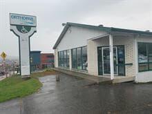 Bâtisse commerciale à vendre à Sherbrooke (Fleurimont), Estrie, 329, Rue  King Est, 10952035 - Centris.ca