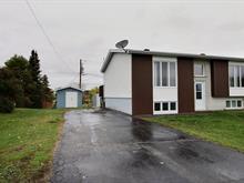 Maison à vendre à Macamic, Abitibi-Témiscamingue, 6, 1re Avenue Est, 26269137 - Centris.ca